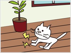 床のきしみ修繕